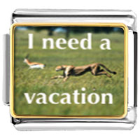 Italian Charms - i need a vacation animal photo italian charms bracelet link Image.