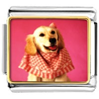 Italian Charms - retriever in pink animal photo italian charms bracelet link Image.