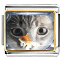 Fishbowl And Cat Animal Photo Italian Charms Bracelet Link