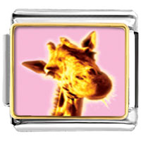 Items from KS - giraffe smile animal photo italian charms bracelet link Image.