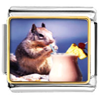 Italian Charms - tropical squirrel animal photo food italian charm bracelet bracelet link photo italian charm Image.