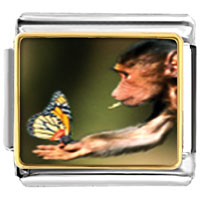 Italian Charms - butterfly monkey spring italian charms photo italian charm Image.