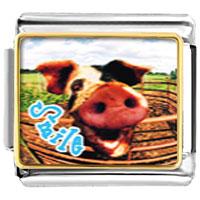 Italian Charms - animal photo smile pig italian charms bracelet link photo italian charm Image.