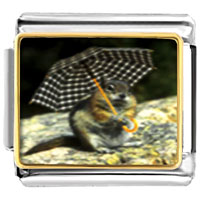 Items from KS - animal photo squirrel with little umbrella italian charms bracelet link photo italian charm Image.