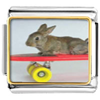 Italian Charms - animal photo bunny skateboarder italian charms bracelet link photo italian charm Image.