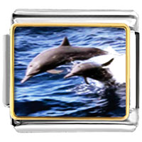Italian Charms - dolphin family animal photo italian charms bracelet link Image.