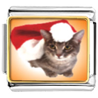 Italian Charms - santa claus christmas gift cat animal photo italian charms bracelet link Image.
