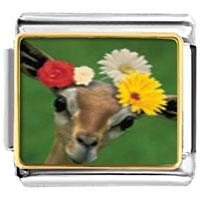 Items from KS - animal photo doe with flowers italian charms bracelet link photo italian charm Image.