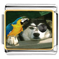Italian Charms - pirate dog animal photo italian charms bracelet link Image.