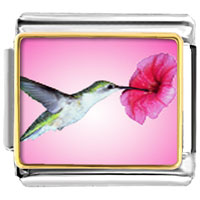 Hummingbird Photo Italian Charm