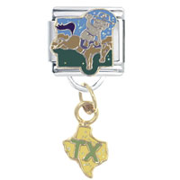 Enamel In Texas Dangle Italian Charm Stainless Steel 9 Mm Link