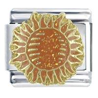 Orange Sun Italian Charms Bracelet Link X2 Italian Charm