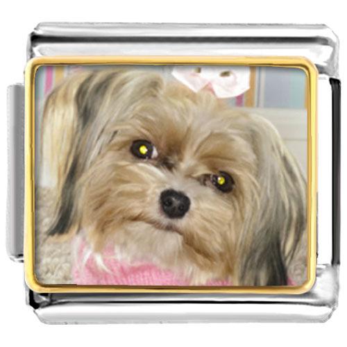 Italian Charms - shih tzu dog animal photo italian charms bracelet link Image.